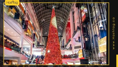 Photo of The Season Of Christmas Trees Comes In A Variety Of Attractive Shapes In Canadian Cities